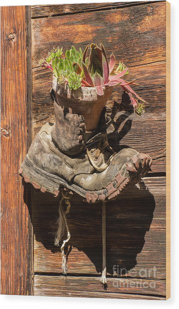 Old Boot Potted Plant - Swiss Alps Wood Print