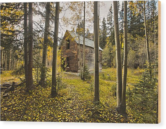 Old Cabin In Iron Town Colorado Wood Print