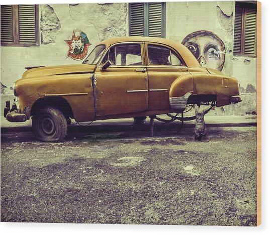 Old Car/cat Wood Print