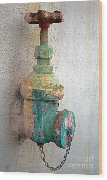 Old Fire Hydrant Wood Print
