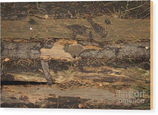 Old Forest Boards Wood Print by Jolanta Meskauskiene