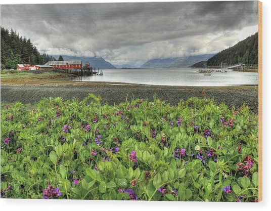Old Haines Cannery Wood Print