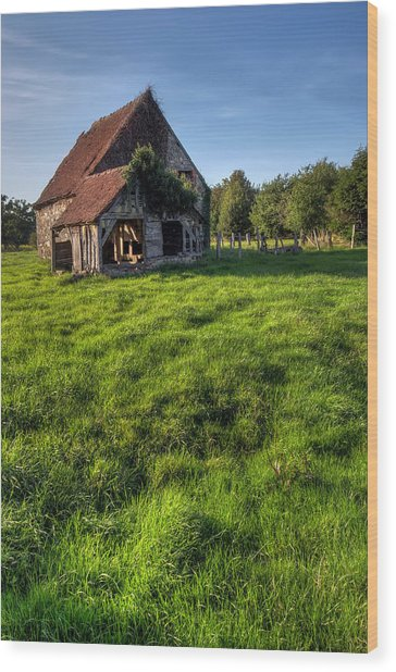 Old House In Summer  Wood Print by Ioan Panaite