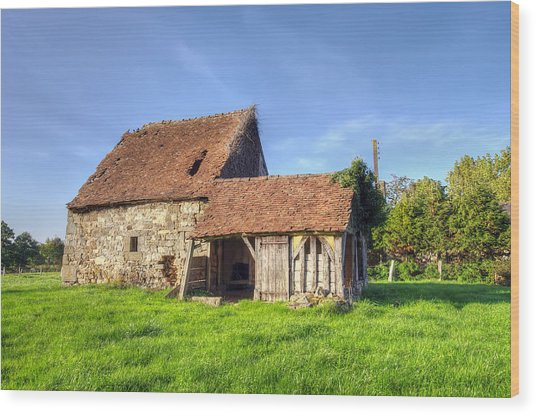 Old House  Wood Print by Ioan Panaite