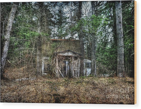 Old House With Overgrown Brush Wood Print by Dan Friend