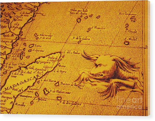 Old Map Of Africa Madagascar With Sea Monster Wood Print