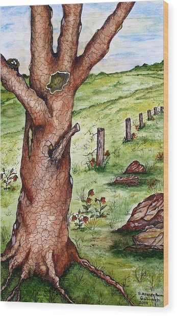 Old Oak Tree With Birds' Nest Wood Print
