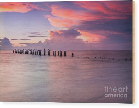 Old Naples Pier Sunset Wood Print