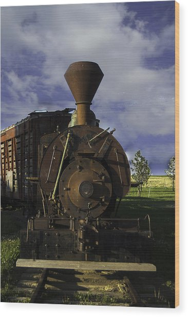 Wood Print featuring the photograph Old Prairie Train by Judy Hall-Folde