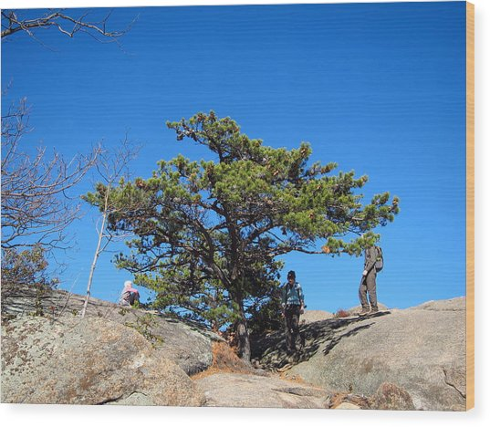Hiking Old Rag Tips: 121238 Photograph By DC Photographer