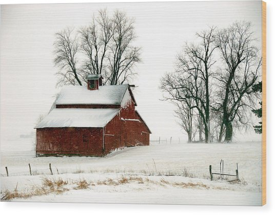 Old Red Barn In An Illinois Snow Storm Wood Print