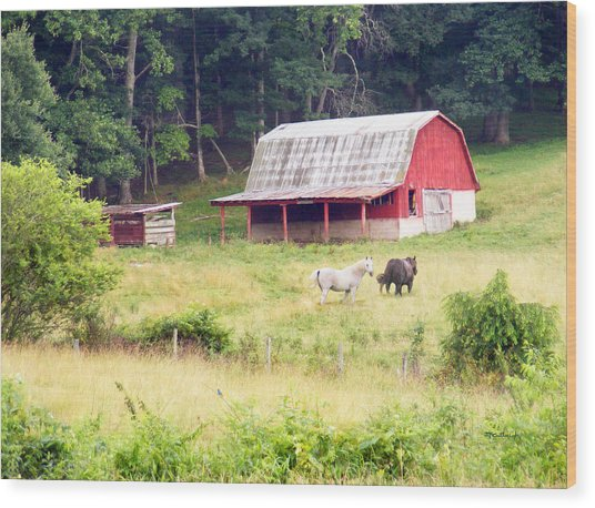 Old Red Barn West Of Brevard Nc Wood Print