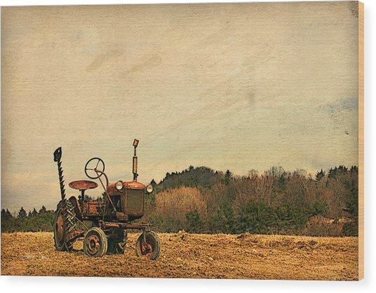Old Red Wood Print