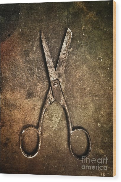 Old Scissors Wood Print