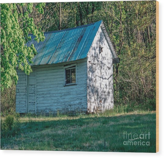 Old Shed Wood Print by Timothy Clinch