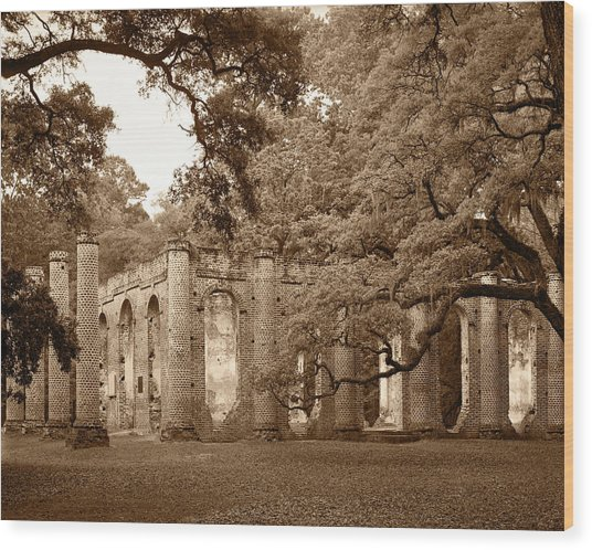 Old Sheldon Church - Sepia Wood Print