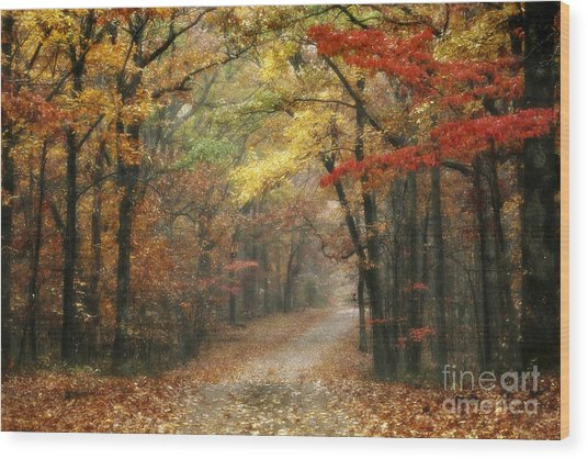 Wood Print featuring the photograph Old Trace Fall - Along The Natchez Trace In Tennessee by T Lowry Wilson