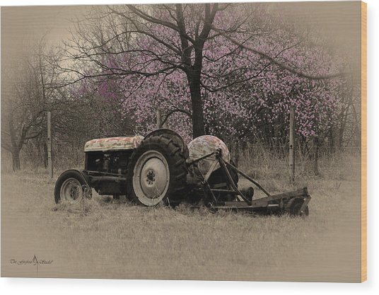 Old Tractor And Redbuds Sepia Wood Print