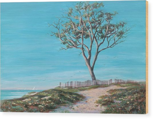 Old Tree In Carpenteria Wood Print by Tina Obrien