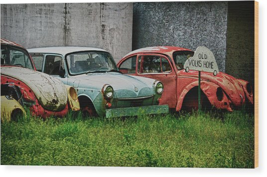 Wood Print featuring the photograph Old Volks Home by Trever Miller