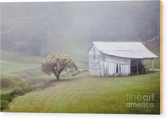 Old Weathered Wooden Barn In Morning Mist Wood Print
