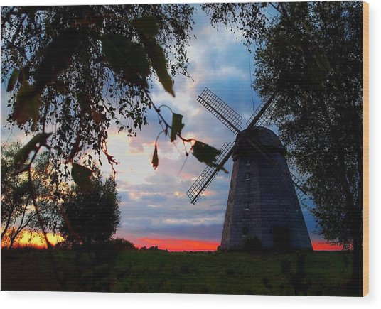 Old Windmill In The Evening Wood Print by Juozas Mazonas