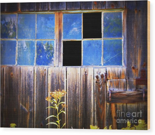 Old Wooden Building Of Broken Dreams Wood Print