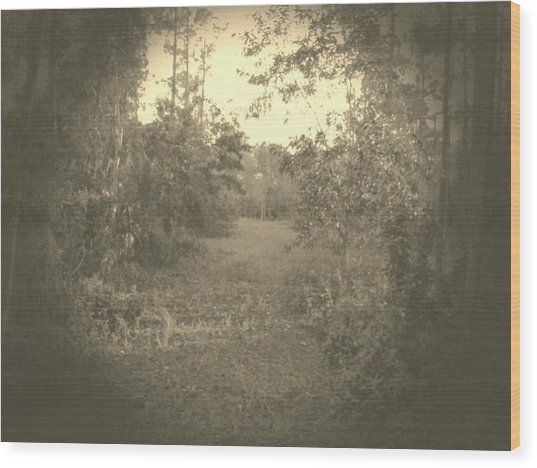 Olden Look Wood Print by Chasity Johnson
