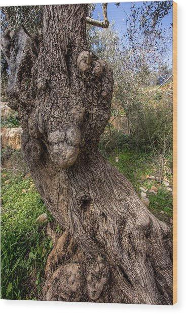 Olive Monster Wood Print