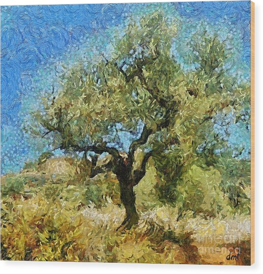 Olive Tree On Van Gogh Manner Wood Print