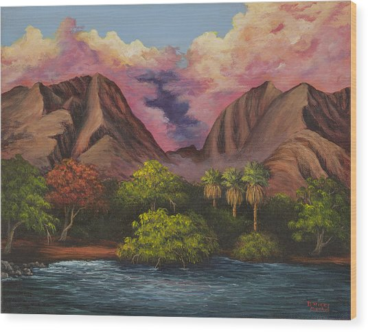 Olowalu Valley Wood Print