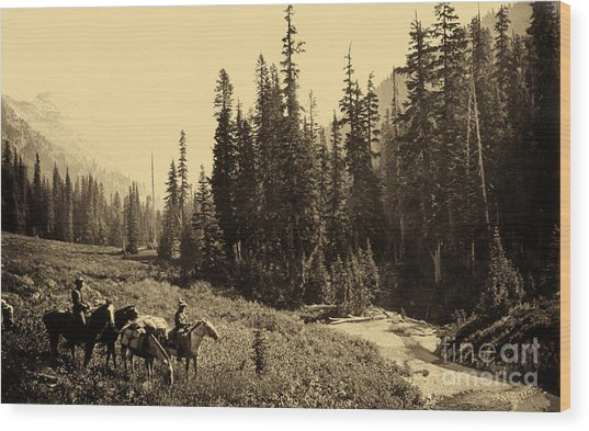 Olympic National Park Horse Packing Wood Print