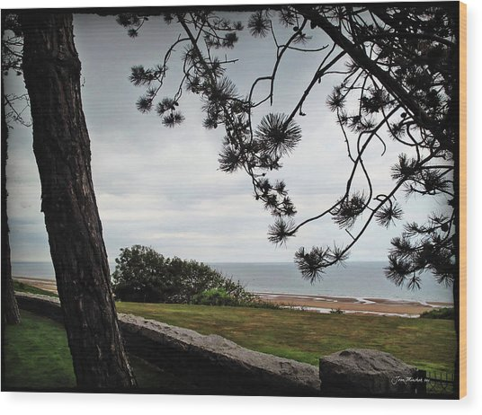 Omaha Beach Under Trees Wood Print