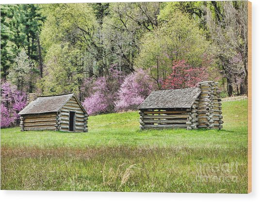 On A Hill At Valley Forge Wood Print