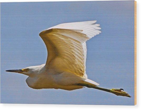 On Angel's Wings Wood Print