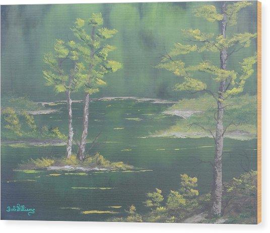 On Emerald Pond Wood Print