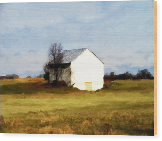 On Hwy B Near Ogdensburg.  Wood Print