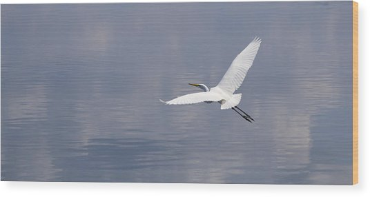 On Swift Wings Wood Print