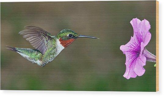 On Target Wood Print