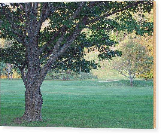 On The Golf Course Wood Print by Gloria Merritt