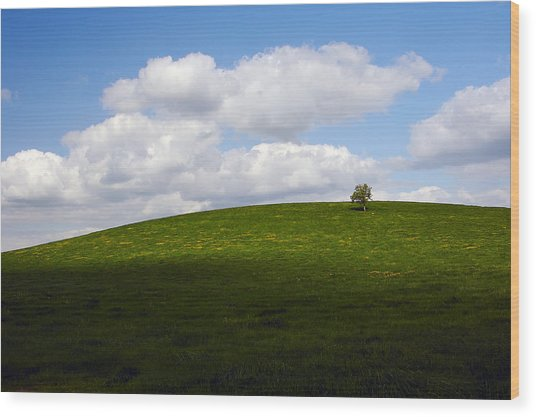 On The Hill Wood Print
