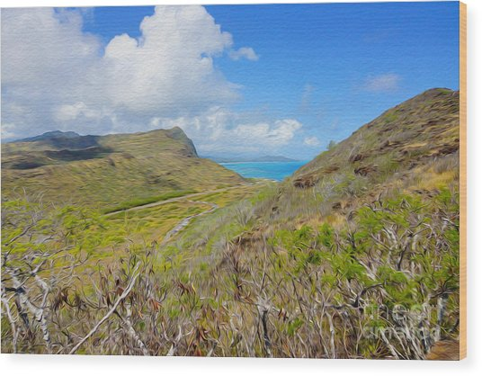 On The Hill Ocean Look Out Wood Print by Nur Roy