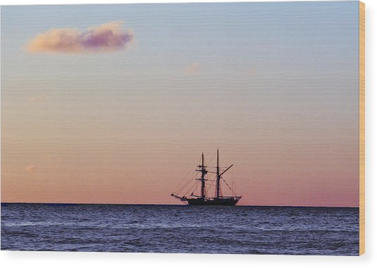 Wood Print featuring the photograph On The Horizon by Debbie Cundy