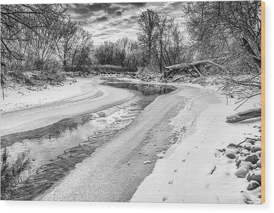 On The Riverbank Bw Wood Print