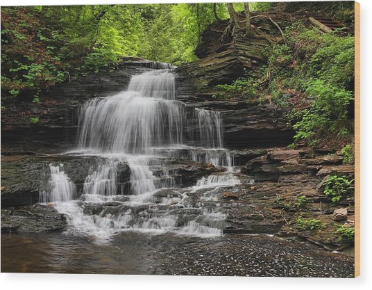 Onandaga Falls Wood Print