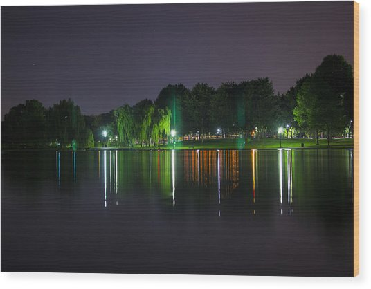 One Foot Lake Wood Print by Michael Williams