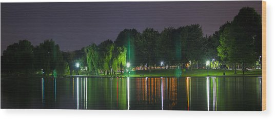 One Foot Lake Panorama Wood Print by Michael Williams