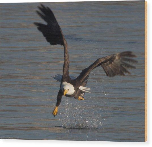 One Legged Grab Wood Print by Glenn Lawrence
