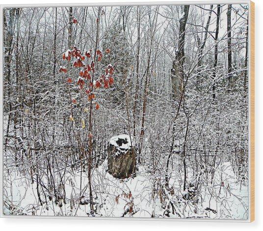 One Lone Log Wood Print by Dianne  Lacourciere