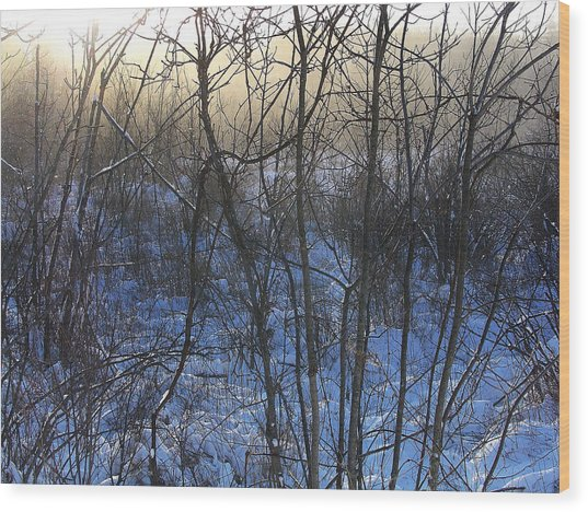 One Solstice Morning In Palenville The Light Broke Through The Dew Wood Print by Terrance DePietro